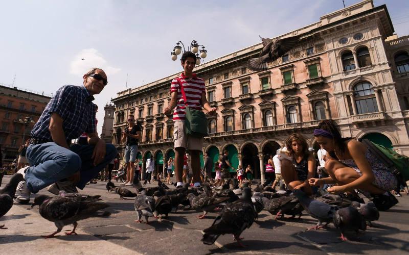 duiven voederen Milaan - citytrip