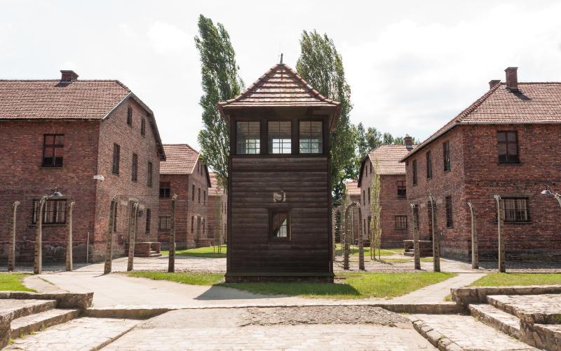 Auschwitz krakau stedentrip